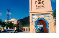 camel_republic01_s.jpg