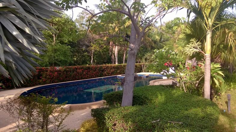 La piscine, sans aucun vis-à-vis de l'extérieur.